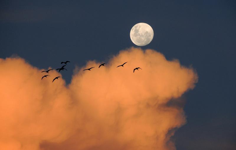 1-moon-323425_1920